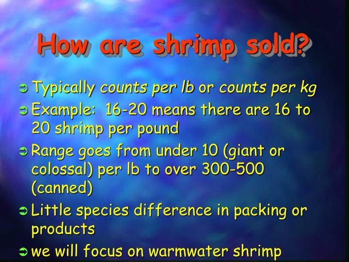 How are shrimp sold