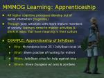 mmmog learning apprenticeship