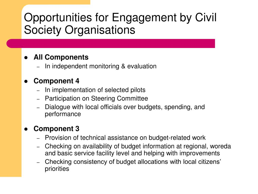 Opportunities for Engagement by Civil Society Organisations
