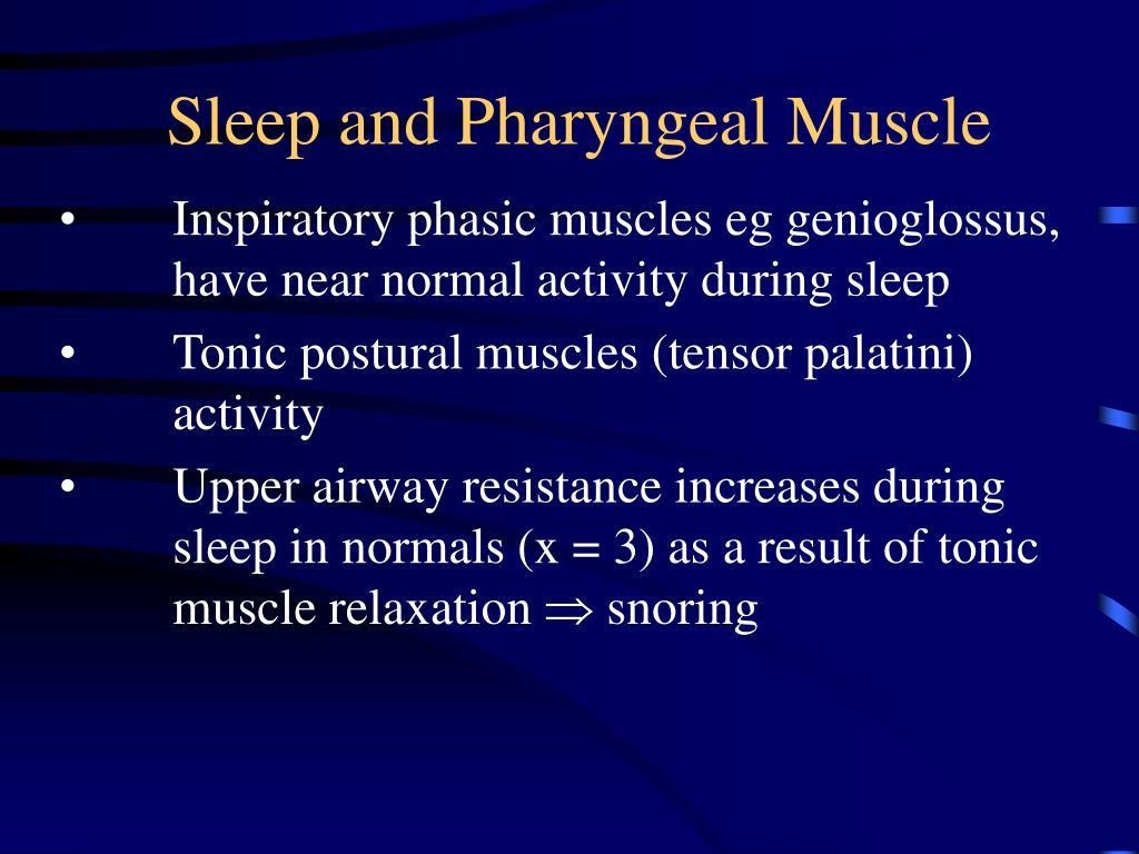 Sleep and Pharyngeal Muscle