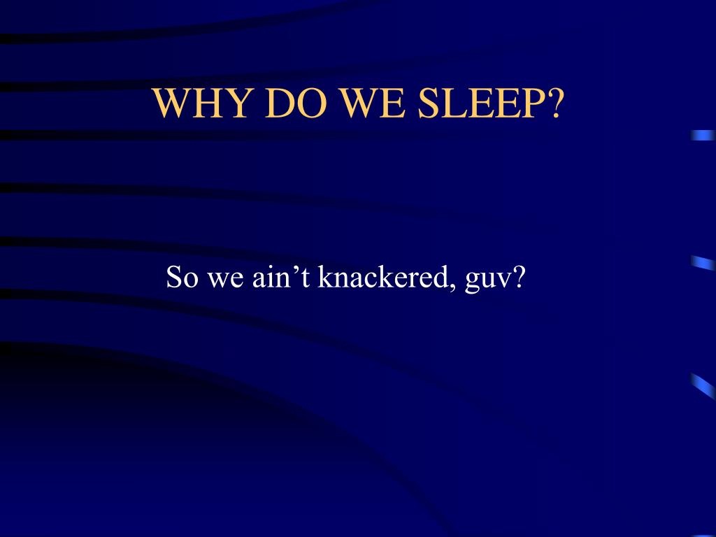 WHY DO WE SLEEP?