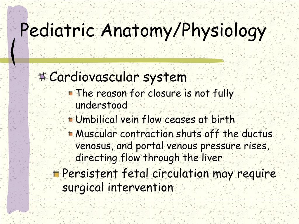 Pediatric Anatomy/Physiology