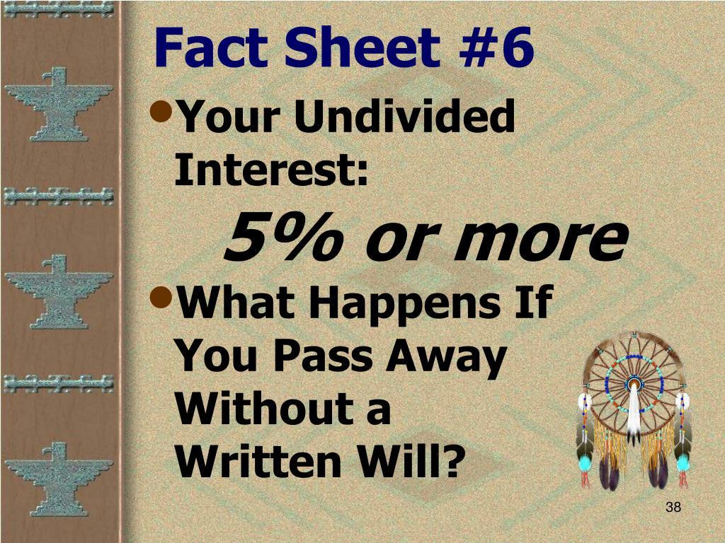 Fact Sheet #6