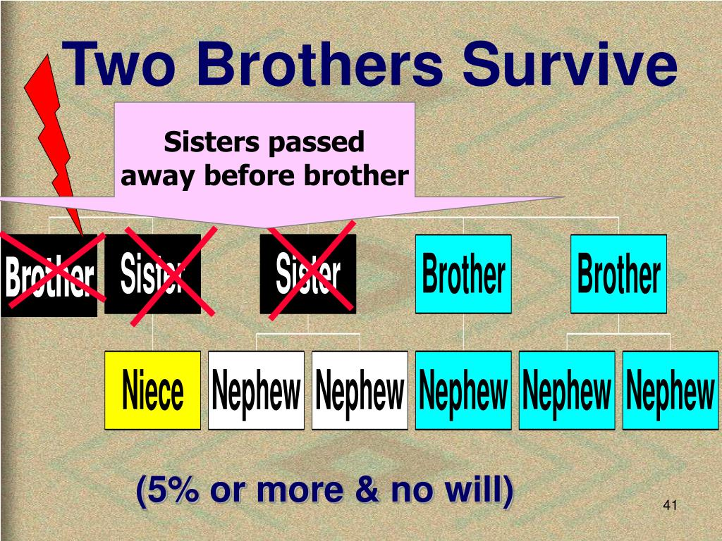 Two Brothers Survive