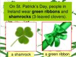 on st patrick s day people in ireland wear green ribbons and shamrocks 3 leaved clovers