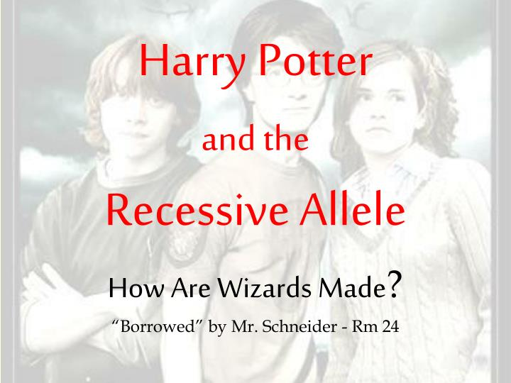 harry potter and the recessive allele n.