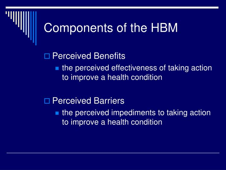 Components of the HBM