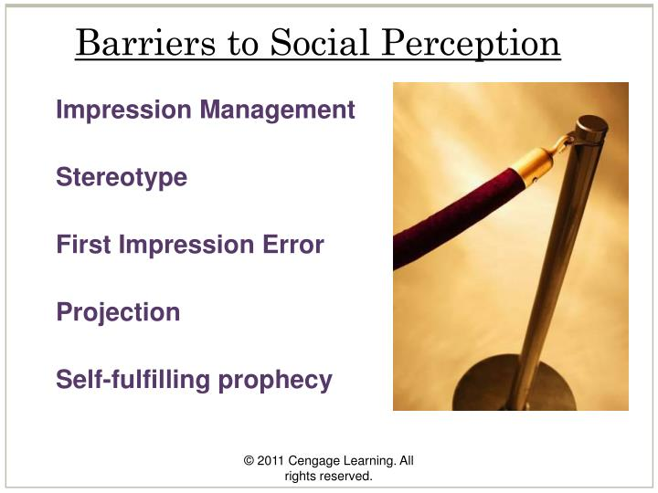 Barriers to Social Perception