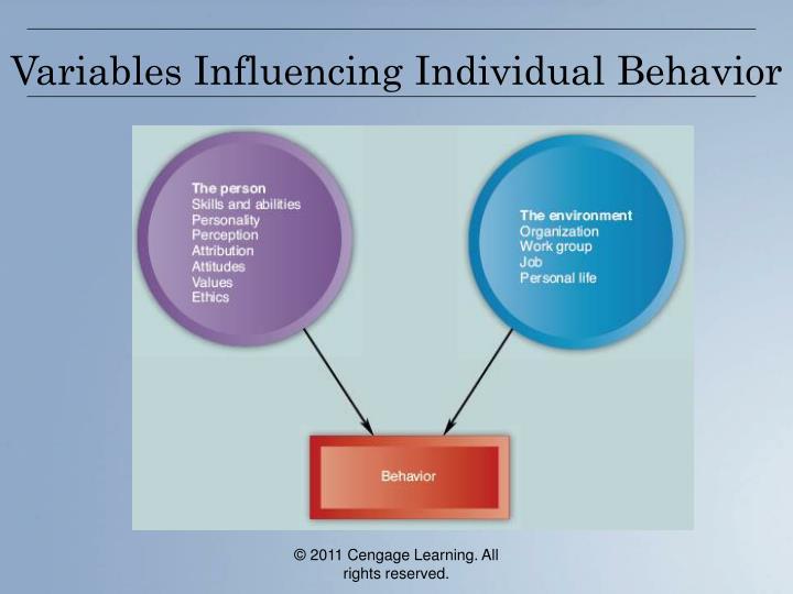 Variables influencing individual behavior
