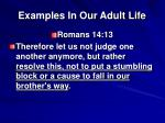 examples in our adult life5