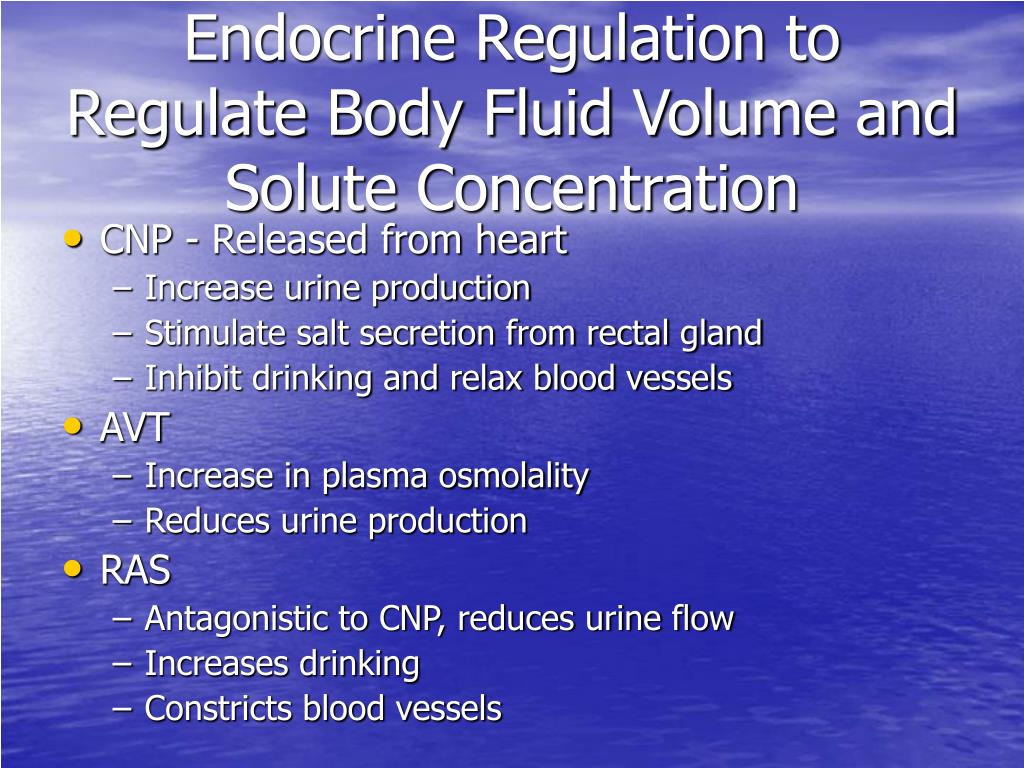 Endocrine Regulation to Regulate Body Fluid Volume and Solute Concentration