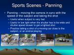 sports scenes panning