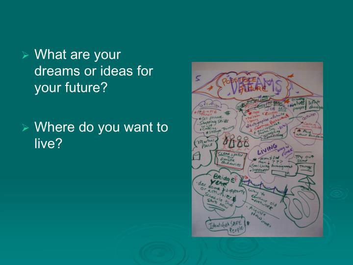 What are your dreams or ideas for your future?