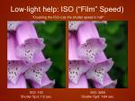 low light help iso film speed