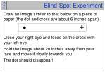 blind spot experiment