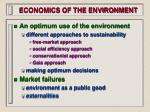 economics of the environment13