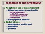 economics of the environment15