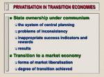 privatisation in transition economies