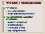 privatisation in transition economies99