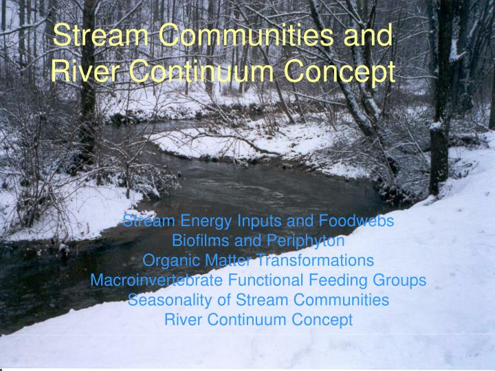 stream communities and river continuum concept n.