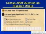 census 2000 question on hispanic origin