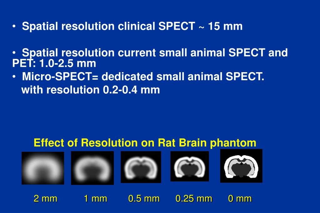 Ppt Design And Simulation Of Micro Spect A Small Animal Imaging System Powerpoint Presentation Id 476636