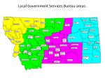 local government services bureau areas