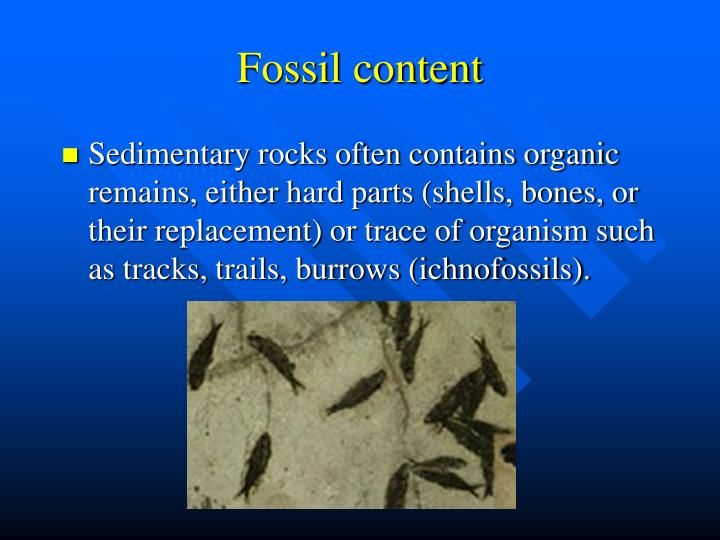 Fossil content