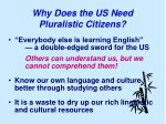 why does the us need pluralistic citizens