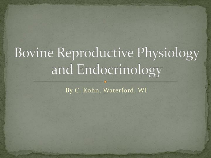 bovine reproductive physiology and endocrinology n.