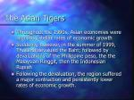 the asian tigers6
