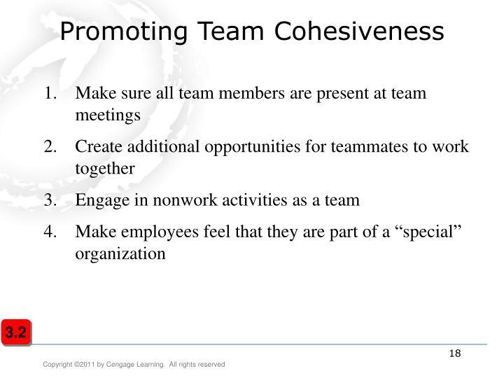 Promoting Team Cohesiveness