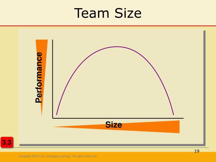 Team Size