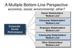 a multiple bottom line perspective economic social environmental other