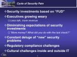cycle of security pain
