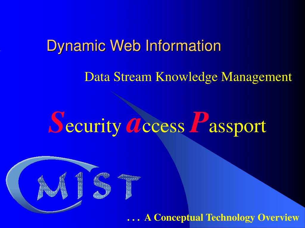 dynamic web information l.