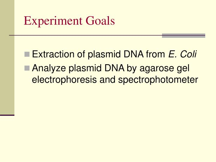 purification and identification of plasmid dna essay Transfer of plasmid dna into bacteria  protein production and purification   and dna analysis methods to identify bacteria that contain the plasmid we're.