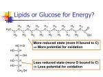 lipids or glucose for energy1