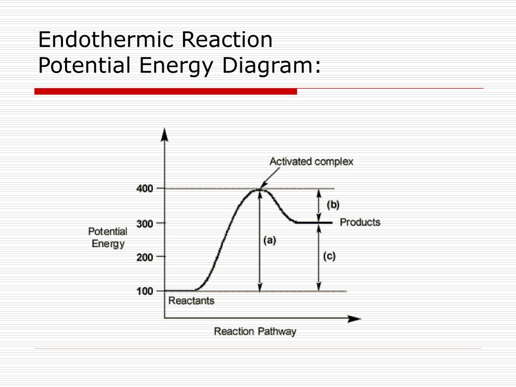 PPT - Topic 8: Kinetics and Equilibrium PowerPoint ...