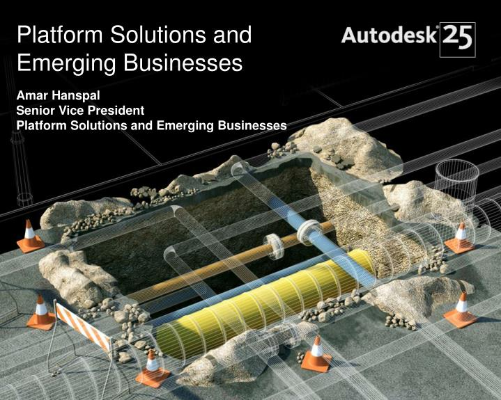 Platform Solutions and Emerging Businesses