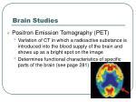 brain studies1