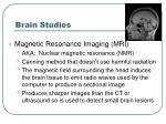 brain studies3