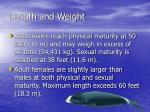 length and weight18