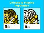 chinese filipino population