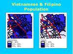 vietnamese filipino population