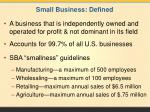small business defined