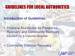 guidelines for local authorities