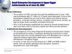 small enterprise development in upper egypt achievements as of june 30 2003