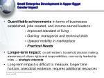 small enterprise development in upper egypt gender impact