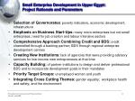 small enterprise development in upper egypt project rationale and parameters